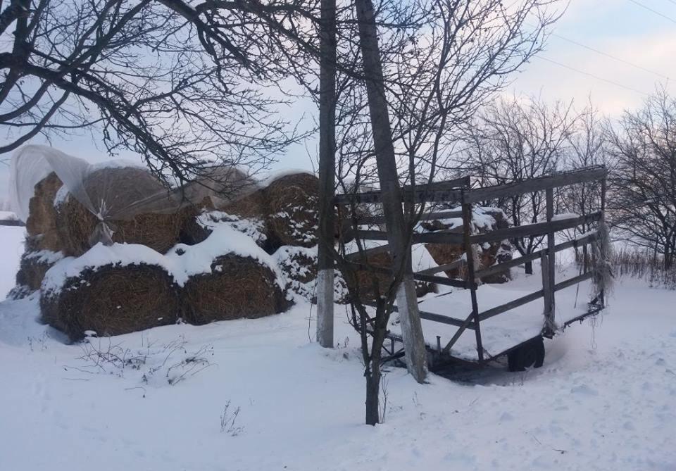 НаХарьковщине женщина из-за усталости оставила малыша всоседском сене