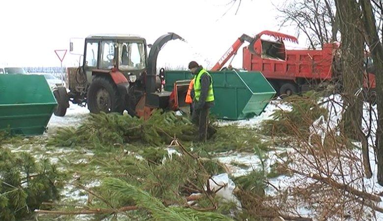 Коммунальщики показали, как в Харькове перерабатывают новогодние хвойные деревья