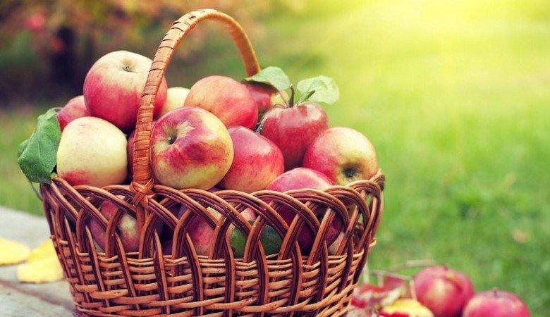 Яблочный спас или Преображение Господне: традиции и обряды