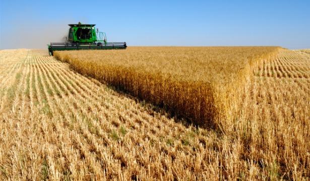 Харьковские аграрии завершили сбор урожая