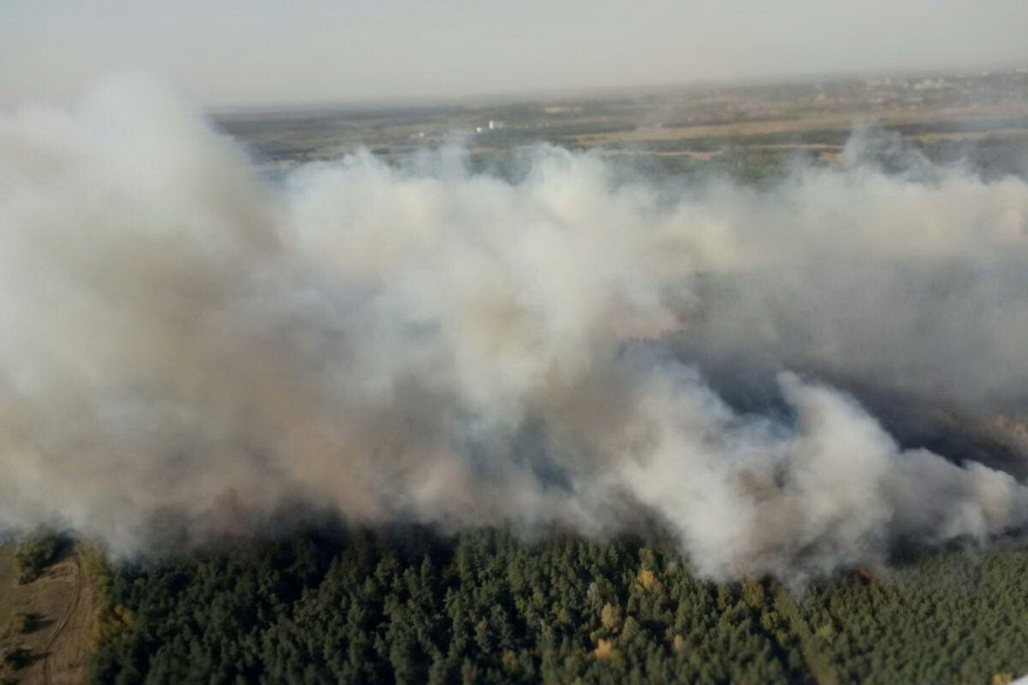 На Харьковщине на территории Красноградского лесхоза возник новый пожар