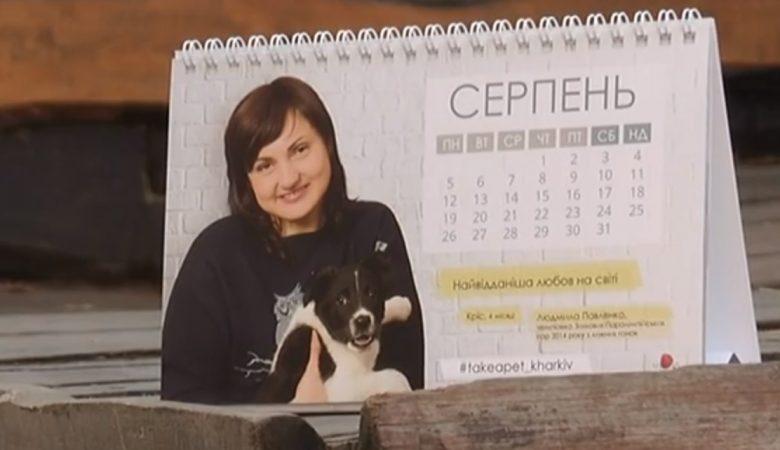 У Харкові створили календар для допомоги безпритульним тваринам (відео)