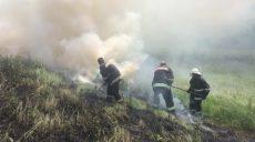 В Изюме на месте горения сухостоя найдено тело мужчины