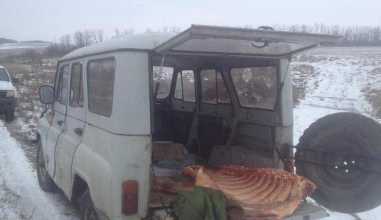 Пограничники задержали 340 килограммов контрабандного мяса