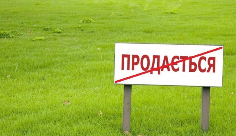 Александр Давтян: Надо дать возможность людям распоряжаться своей землей