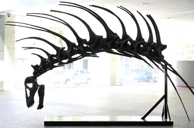 Шипы на шее: в Аргентине обнаружили новый вид динозавра (фото)