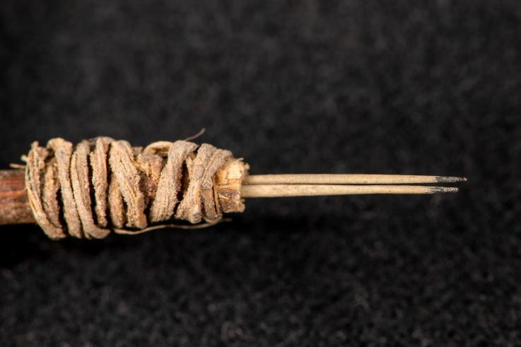 В США найден инструмент, которым набивали татуировки около 2000 лет назад