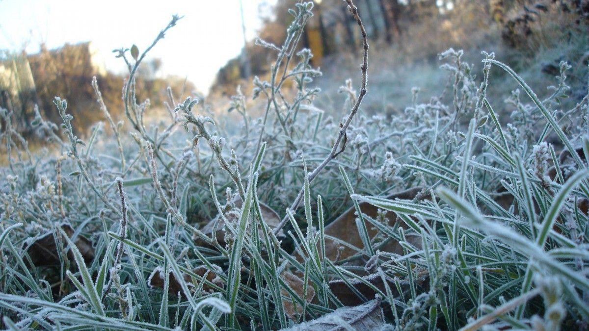 Погода испортится: украинцев предупредили о заморозках