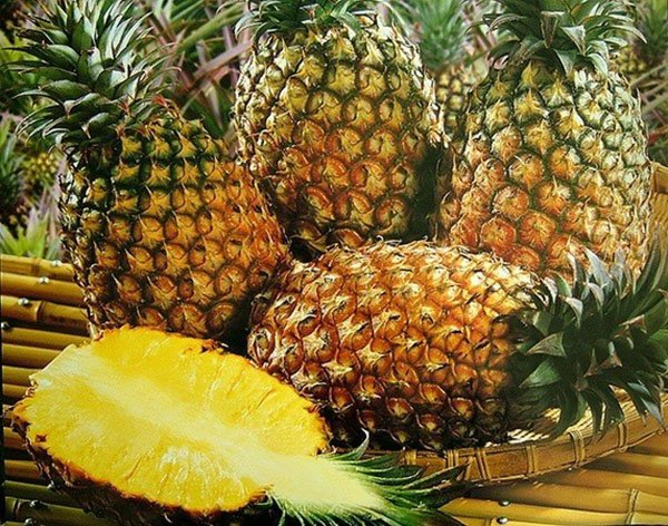 Я куплю вам ананасы, но они будут из кирпичей, – Кернес о закупках зоопарка