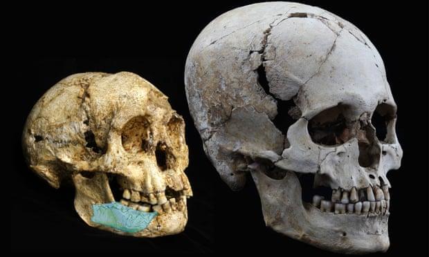 Новый вид: ученые обнаружили останки миниатюрного древнего человека (фото)