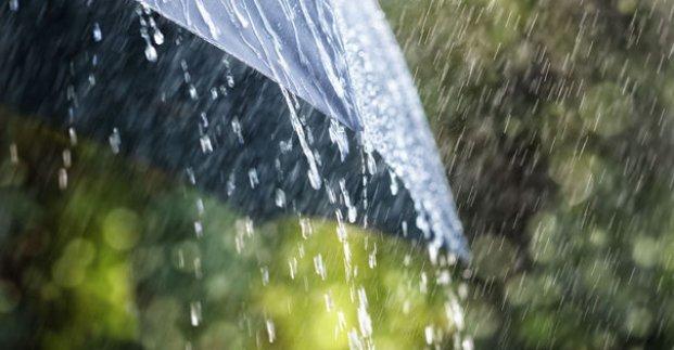 Завтра в Харькове – тепло и дождь
