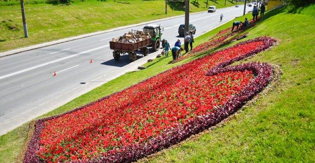 В Харькове создают стометровую цветочную надпись