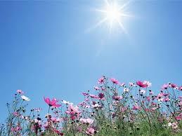 Завтра в Харькове – до 33 градусов тепла