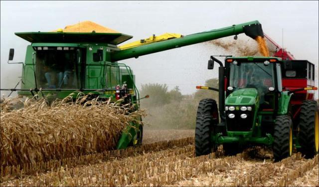 Более 90% всходов озимой пшеницы на Харьковщине – в хорошем и удовлетворительном состоянии