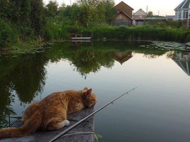 На выходных в Харькове будет жарко