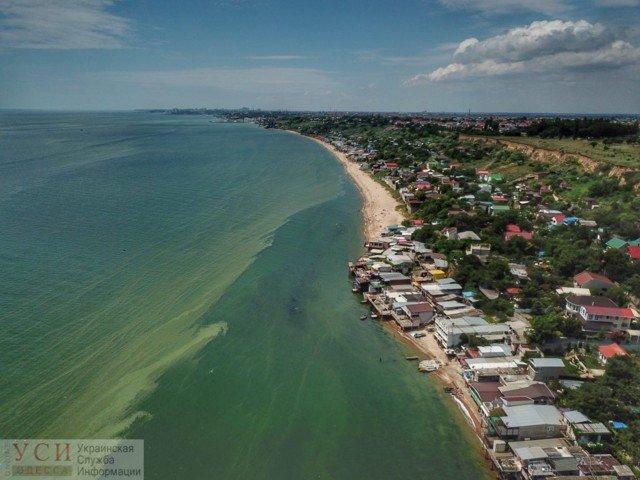 Нельзя купаться: в Одессе море стало зеленым (фото)