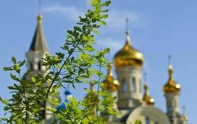 Троица в Харьковской области: в 250 храмах прошли богослужения