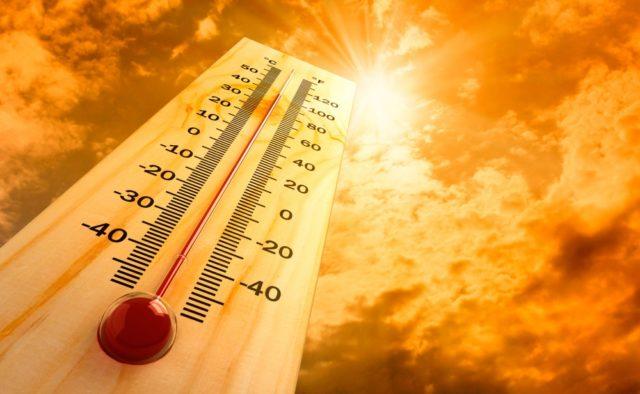 На Харківщині очікується спекотна погода (відео)