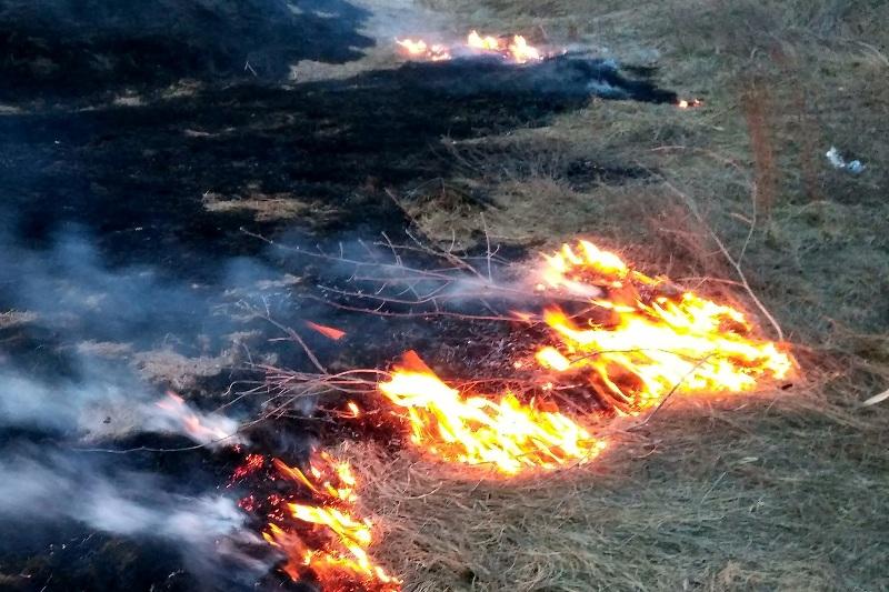 Под Харьковом горела свалка