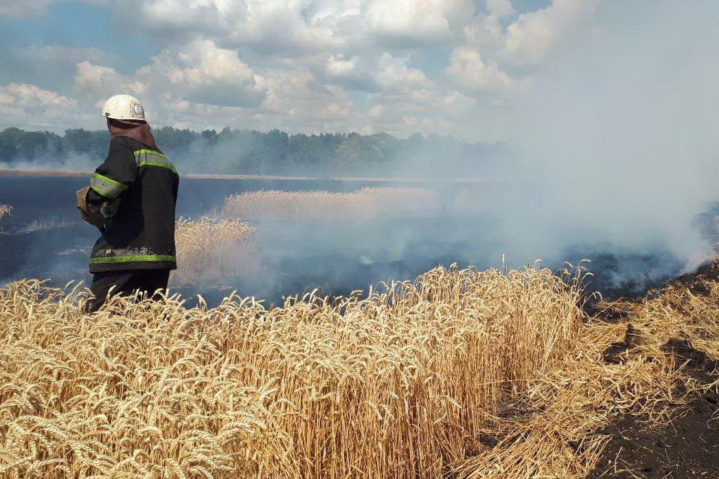 Спасатели ликвидировали пожар на поле