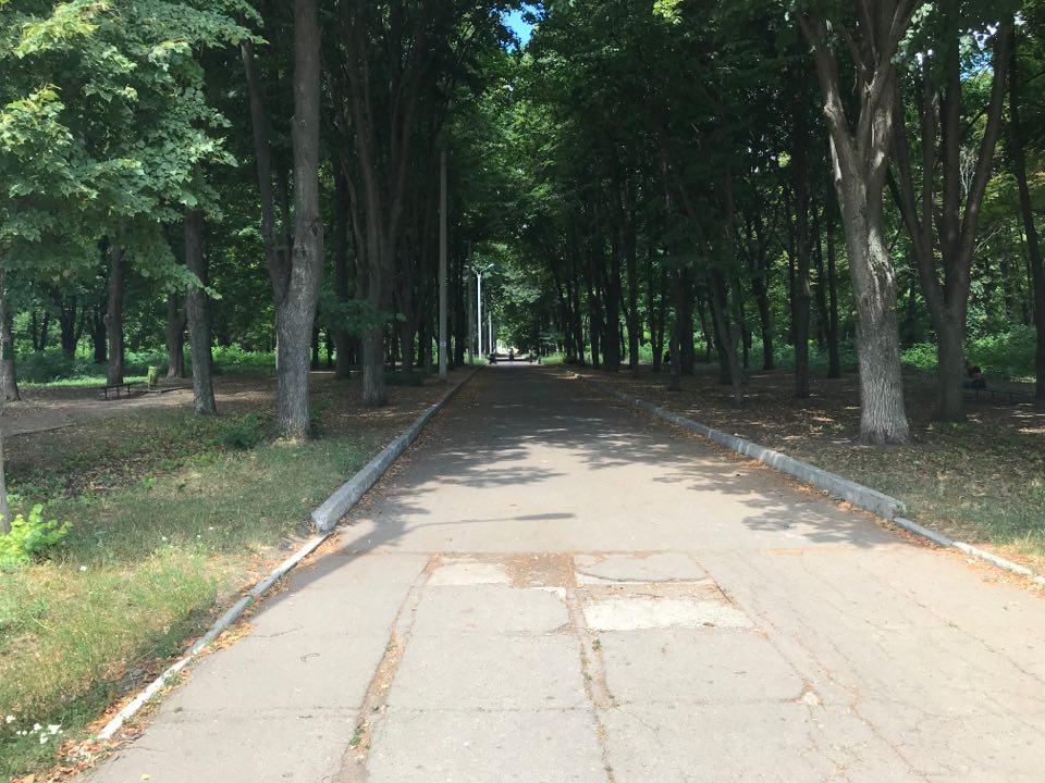 Петиция о реконструкции парка «Зеленый Гай» набрала необходимое количество подписей