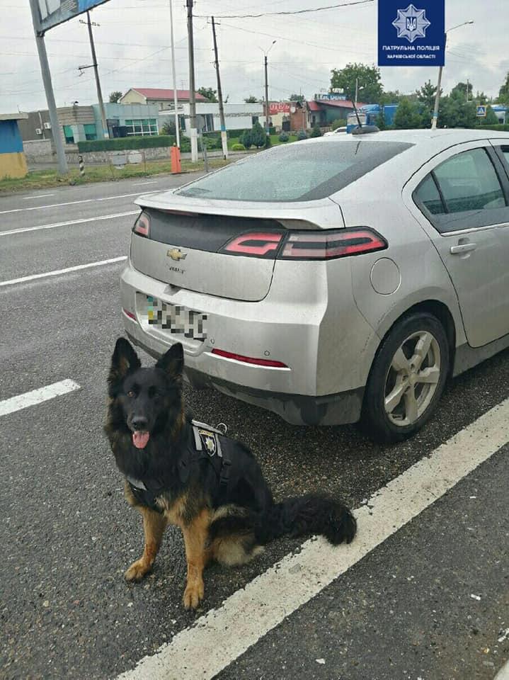 На Харьковщине полицейская собака указала на граждан с веществами, похожими на наркотические