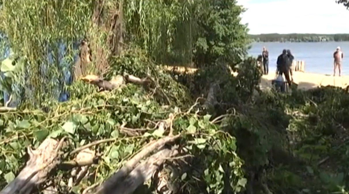 Фатальний відпочинок: у Харкові збирають кошти на допомогу чоловікові, на якого впала тополя (відео)