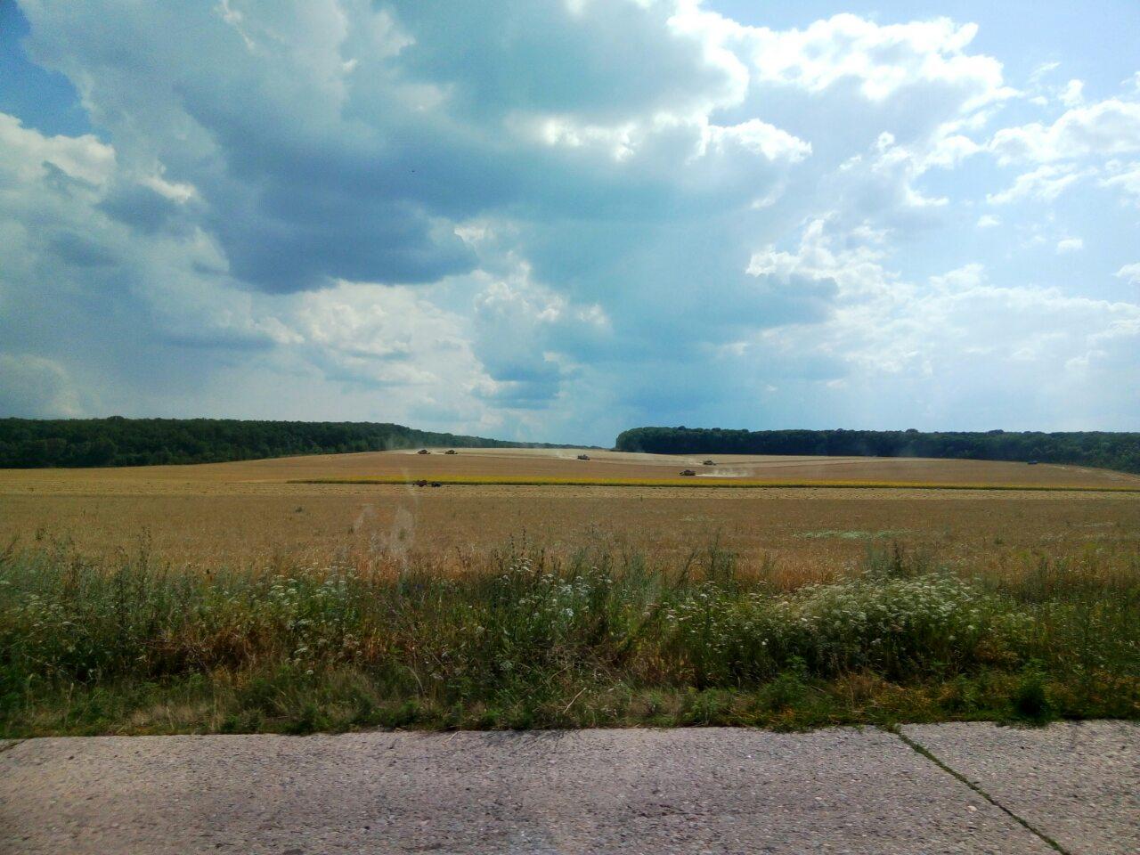 На Харьковщине уже собрали два миллиона тонн зерна