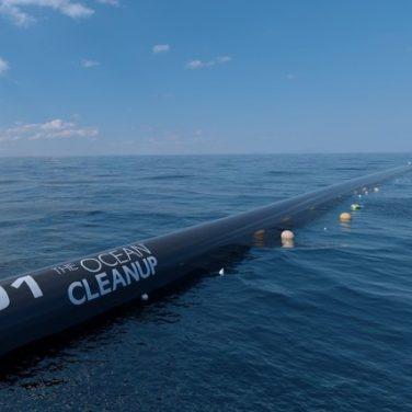 60% мирового океана загрязнено из-за влияния человека – ученые