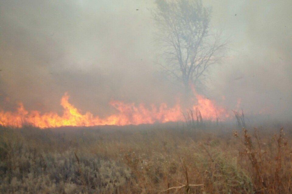 Пожар на полигоне в Башкировке локализован