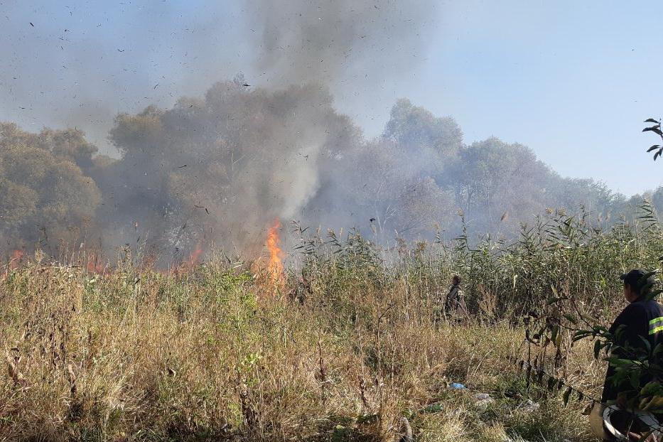 На Харьковщине горят болота. Пострадал человек (фото)