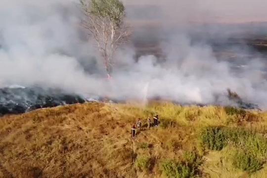 Появилось видео масштабного пожара на Харьковщине