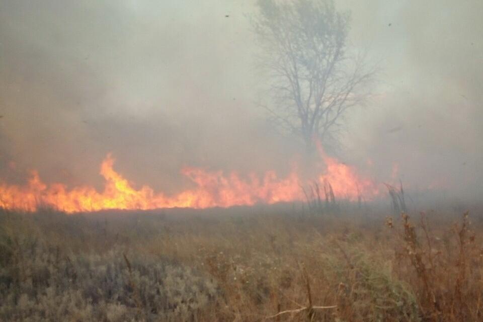 Горящие торфянники на Харьковщине не угрожают жизням военных и гражданских – Минобороны