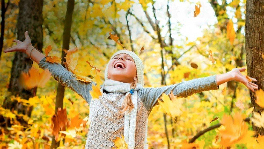 Осенние каникулы начнутся в школах 28 октября