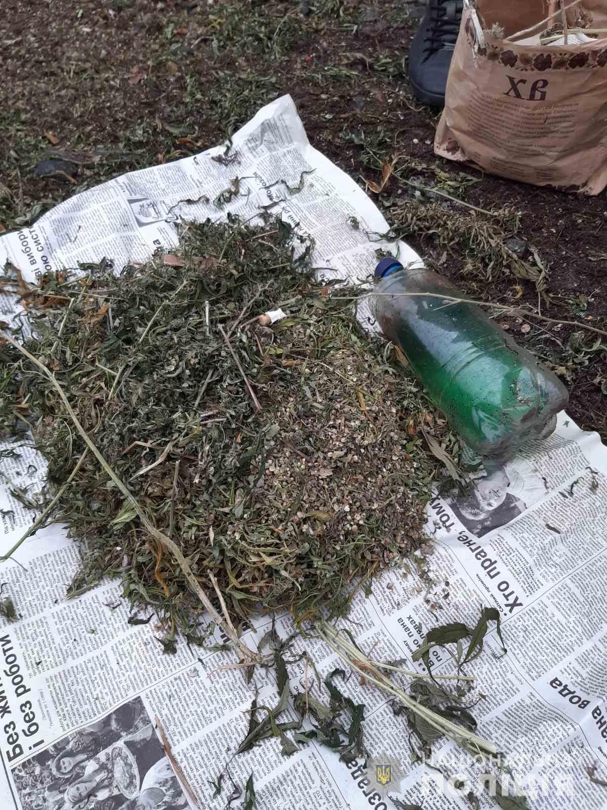 Полиция обнаружила 3 килограмма конопли в Харьковской области (фото)