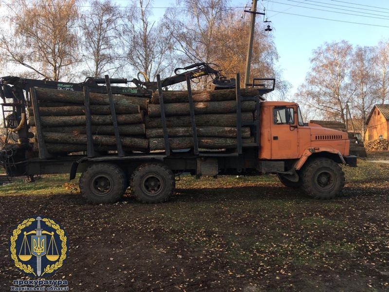 Восемь должностных лиц Октябрьского лесхоза подозреваются в растрате