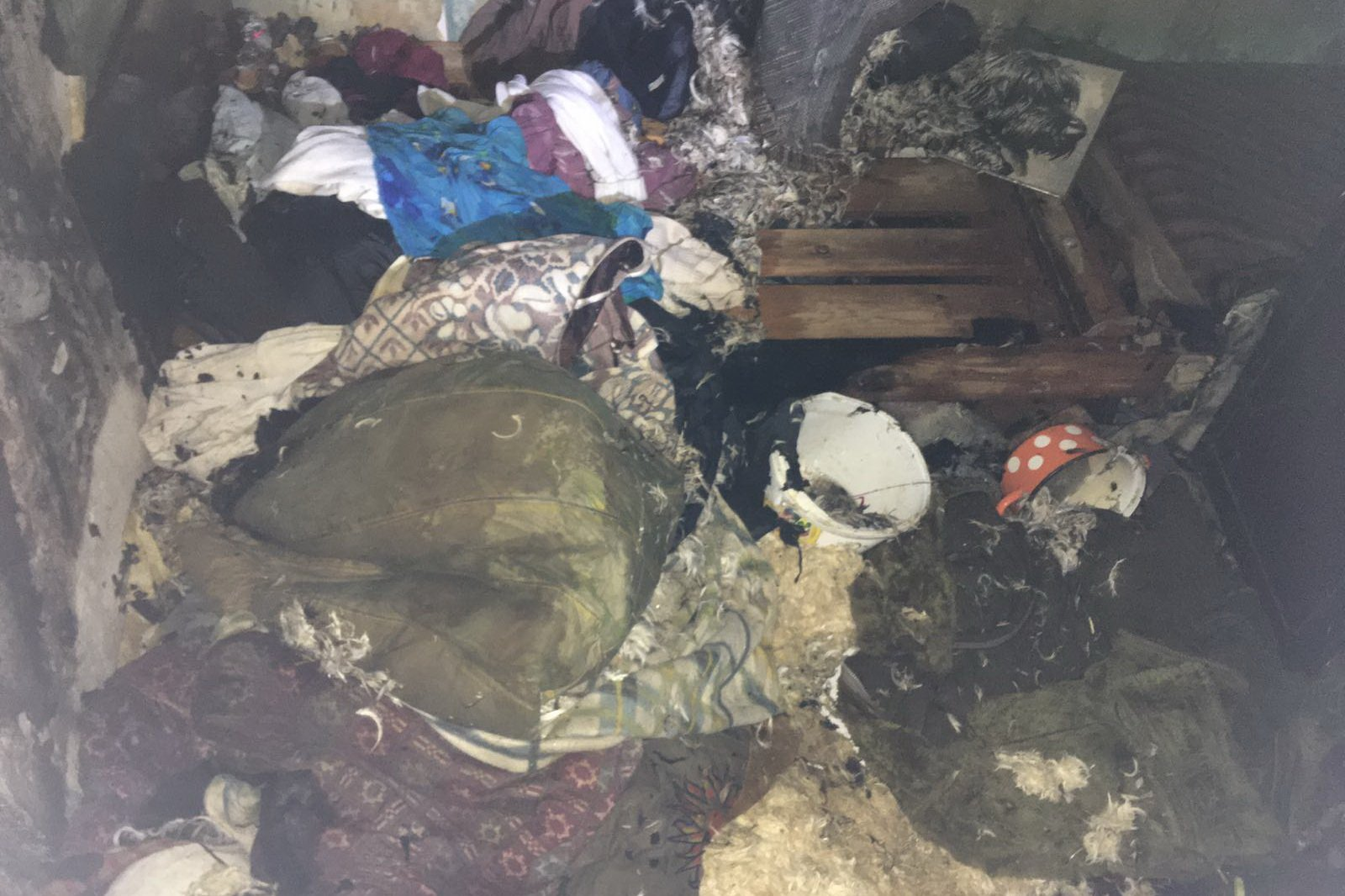 В Харькове на пожаре чуть не погибли двое детей (фото)
