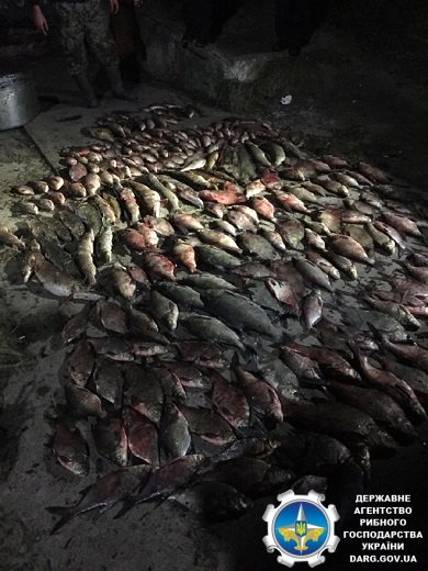 Инспекторов рыбпатруля пытались сжечь, утопить и зарезать (фото)