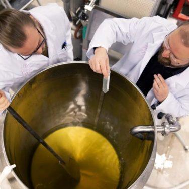 Финские ученые делают еду из воздуха (фото)