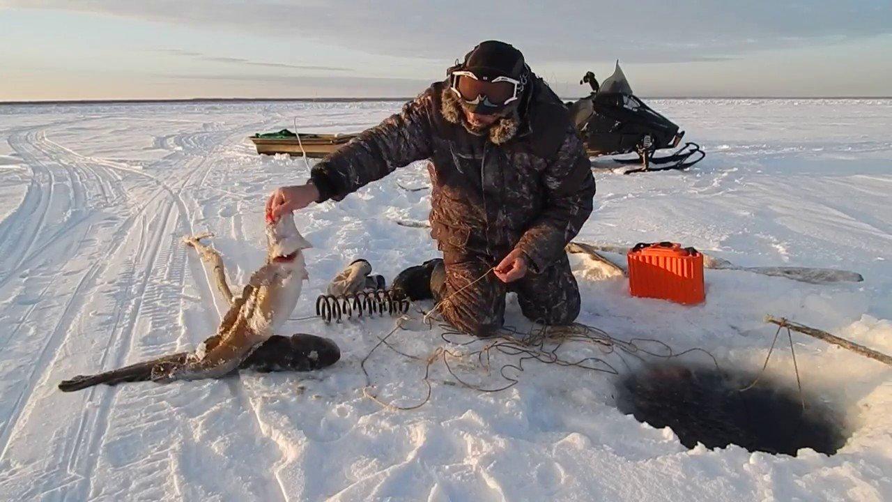 На Харьковщине продолжает действовать запрет ловли рыбы на зимовальных ямах