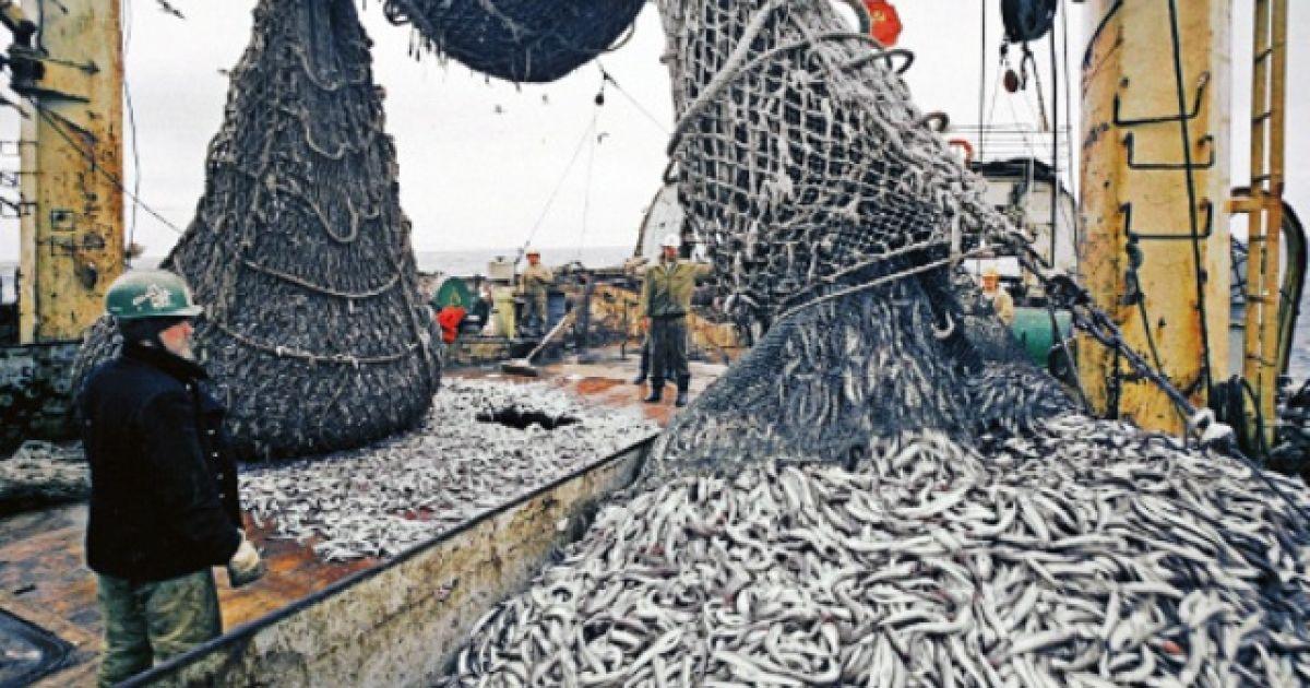 Рыбаки обеспокоены разворовыванием средств на зарыбление