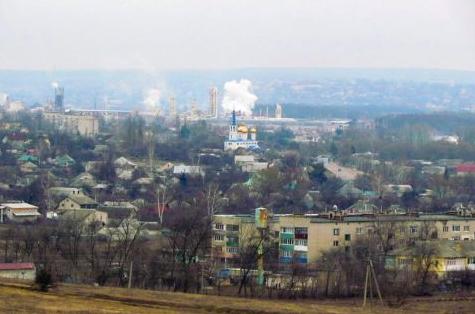 Собаки на Харківщині не дають проходу людям