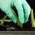 Лайфґак квітникарства: укорінюємо кімнатні рослини