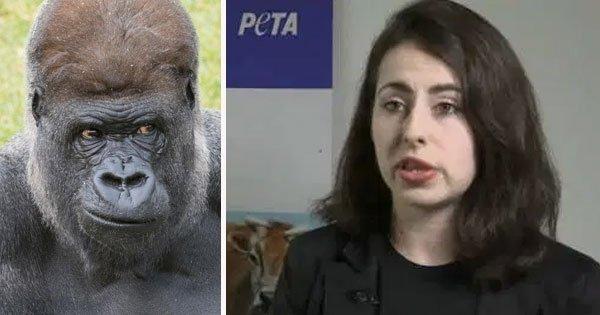Американська біологиня виношує дитя горили