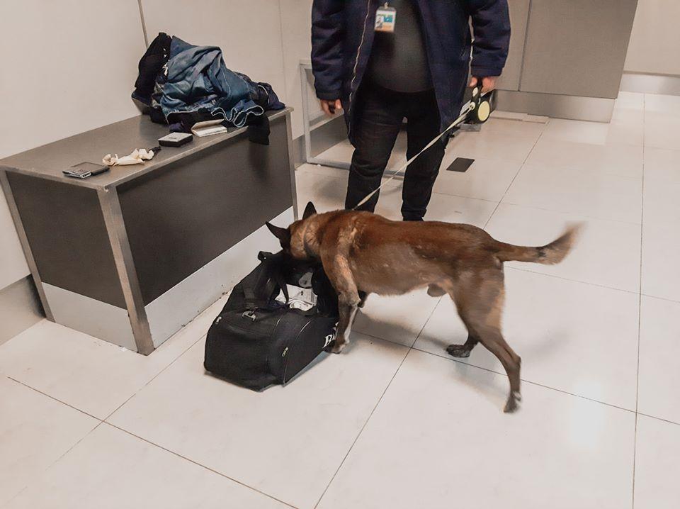 В Харківському аеропорту вилучено наркотики