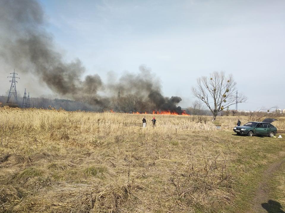 В Харькове горит сухостой (фото)