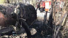 В Харькове из-за сжигания сухой травы повреждены теплотрасса и автомобиль (фото)