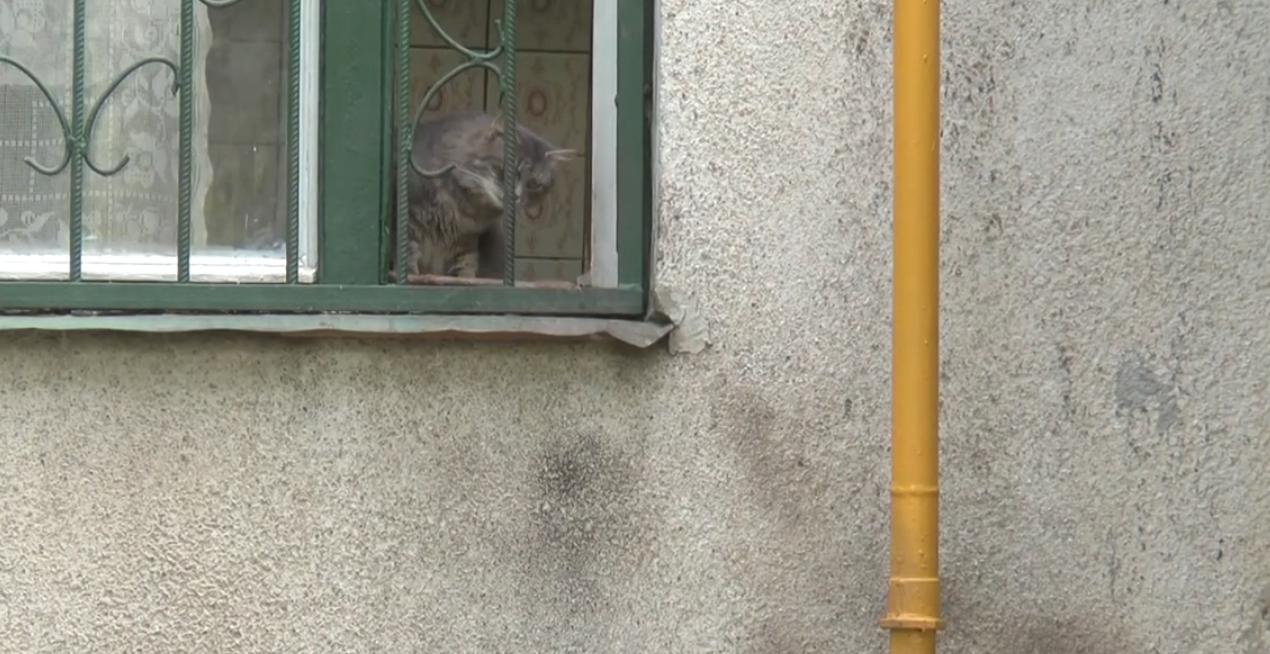 Вбив дружину та ледь не підірвав дім: подробиці трагедії у Харкові (відео)
