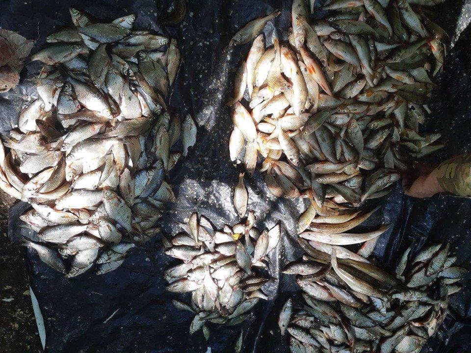 На Харьковщине браконьеры нарыбачили почти на 37 тысяч гривен (фото)