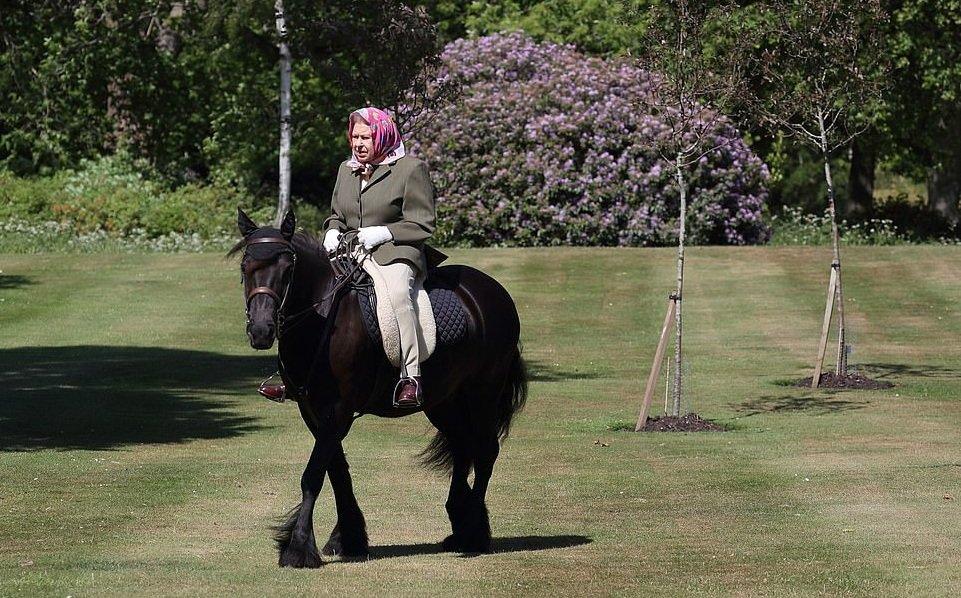 Елизавета ІІ впервые с начала карантина выехала на конную прогулку (фото)
